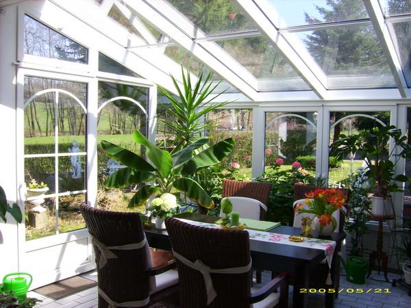 pflanzen f r wintergarten pflanzen innen pflanzen wintergarten design ideen ideale pflanzen f. Black Bedroom Furniture Sets. Home Design Ideas
